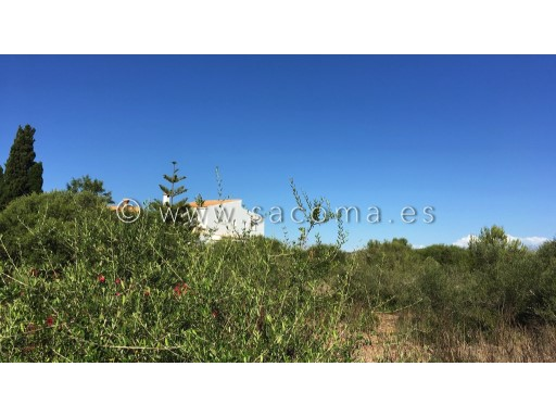 Mallorca, sa coma, building plot of land |