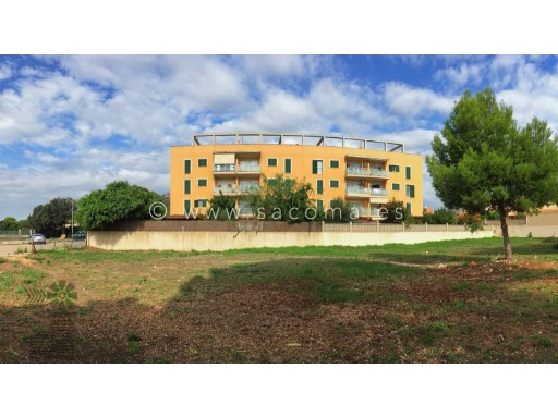 Mallorca, Cala Millor, 3 bedroom penthouse. Quiet and sunny.  | 3 Bedrooms | 2WC