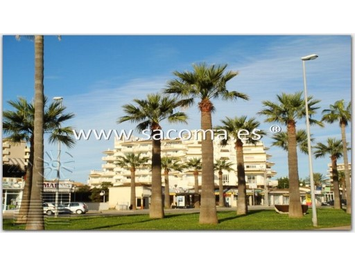Mallorca, Sa Coma, Apartment with swimming pool 'Apartments Playsol' | 1 Bedroom | 1WC