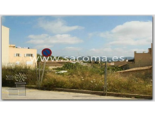 Mallorca, Sant Llorenç des Cardassar, Son Carrío, land in front of the school |