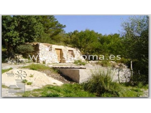 Mallorca, Manacor, Son Macia, romantic Finca, nature reserve. | 1 Bedroom