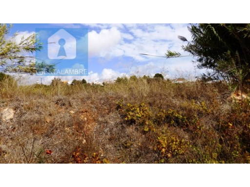 Excellent rustic land in Pêra |