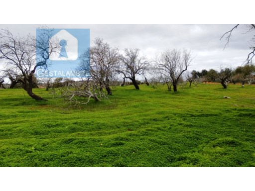 Plot of rustic land with 10,200 sqm in Albufeira |