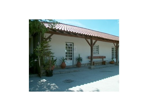 Farm › Viana do Castelo |