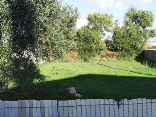 Land for sale in Loures/Montemor |