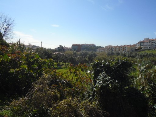 Land land for sale s. Domingos de Rana |
