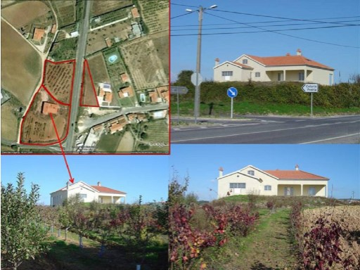 Houses villa with plot of 5,000 m2 for sale |