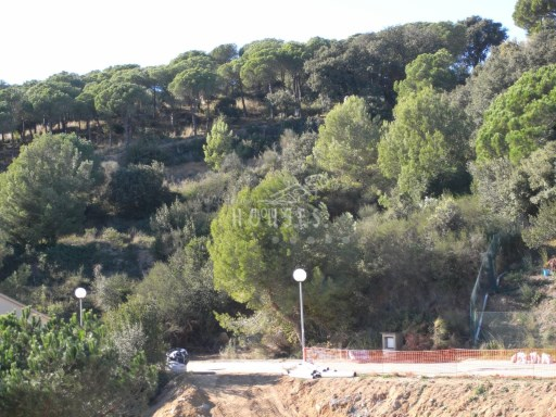 Plot › Lloret de Mar |