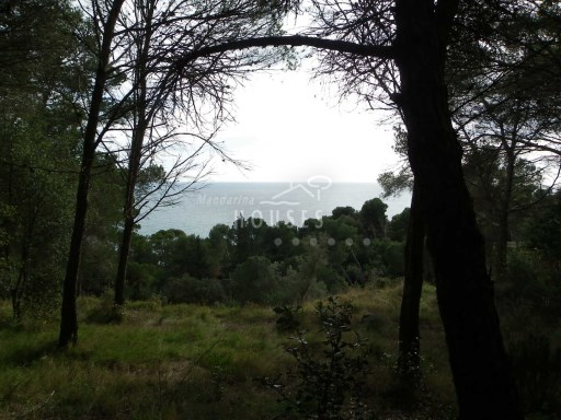 Plot to rebuild with views to the sea, Lloret de Mar, Costa Brava Sud re. 1316 |