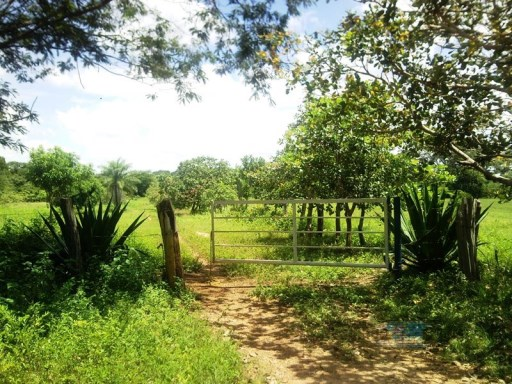 Country Home › Francisco de Miranda | 2 Bedrooms