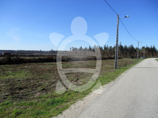 Land › Pombal |