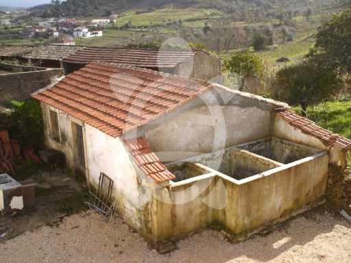 House › Coimbra | 5 Bedrooms | 2WC