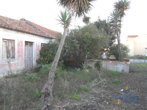 Old House to recover, just minutes from Caldas da Rainha. | 3 Bedrooms