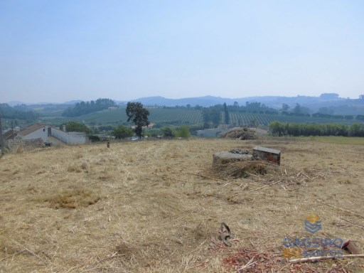 Land with approved plans in Acipreste - Alcobaça - Silver Coast |