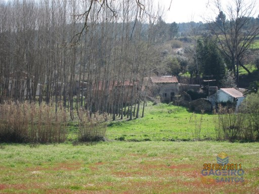Homes to rebuild with land in Alpedriz-Alcobaça-Silver Coast |