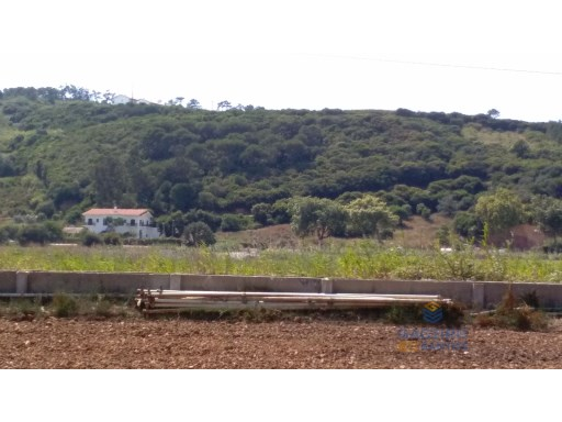 Land for cultivation in the fields of Cela - Alcobaça |