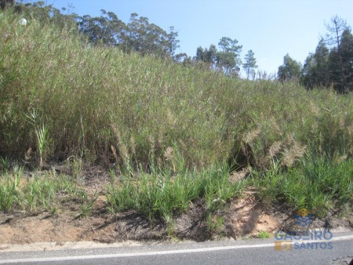 Land for construction, located in the center of the village of Nazare. |