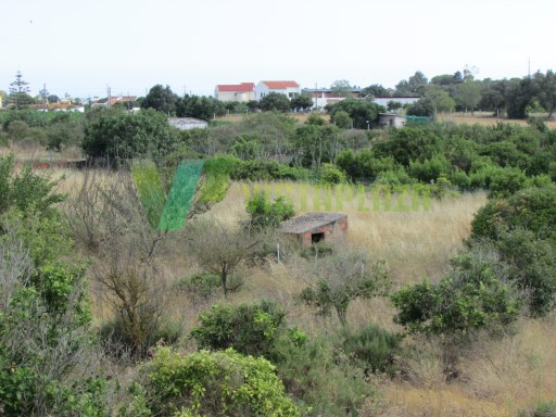 Ground in Mexilhoeira Grande with 10,000 m ², with feasibility for construction of Housing with the area of 300 m ² |