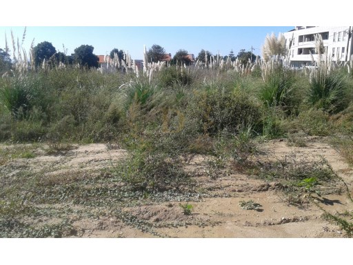 Land with viability for apartment building |