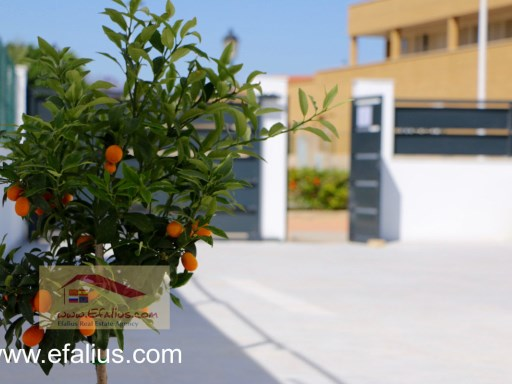 Mar Menor Villa Eco - Efalius-16%10/24