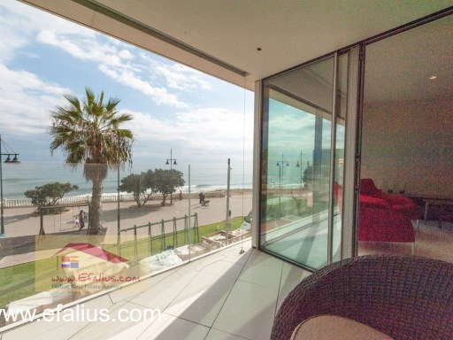 Torrevieja - First Line - Efalius-25%3/31