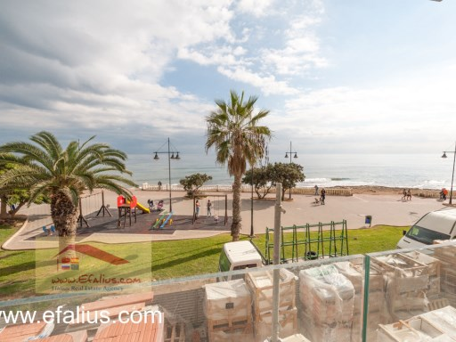 Torrevieja - First Line - Efalius-24%27/31