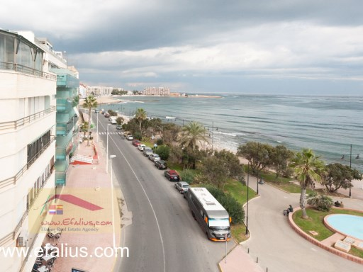 Torrevieja - First Line - Efalius-32%17/31