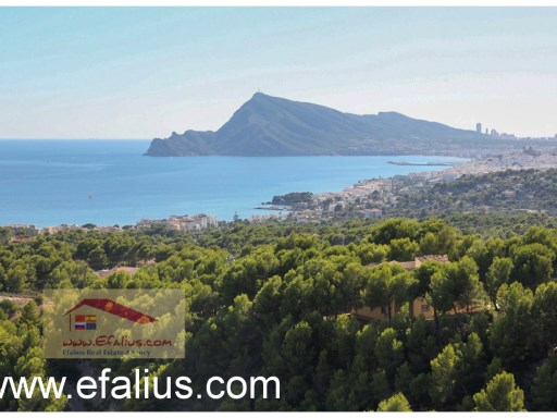 Altea Hills - Villa France (18)%25/41