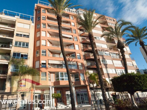 First Line Torrevieja - Efalius-26%2/17