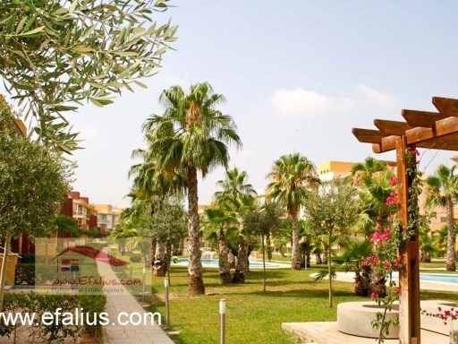 Hacienda del Alamo, Golf Resort, Efalius-34%50/52