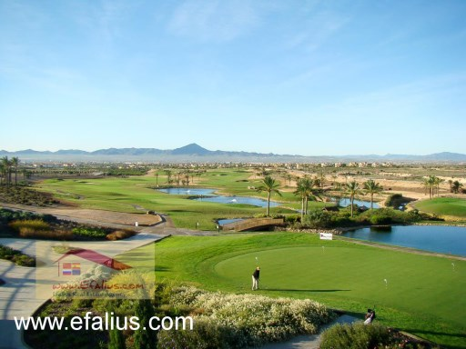 Hacienda del Alamo, Golf Resort, Efalius-19%35/41