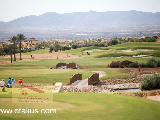 Hacienda del Alamo, Golf Resort, Efalius-20%36/41