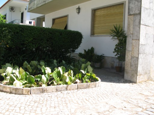 Two-flat House › Beja | 3 Bedrooms | 2WC