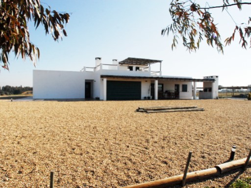 Farm › Ferreira do Alentejo | 5 Bedrooms