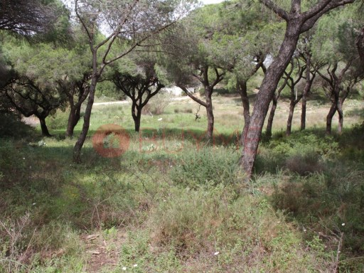 Plot of land for construction in Quarteira |