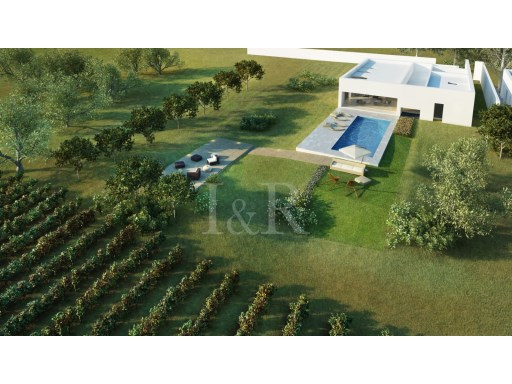 VILLA WITH PRIVATE VINEYARD IN ALENTEJO | 3 Bedrooms