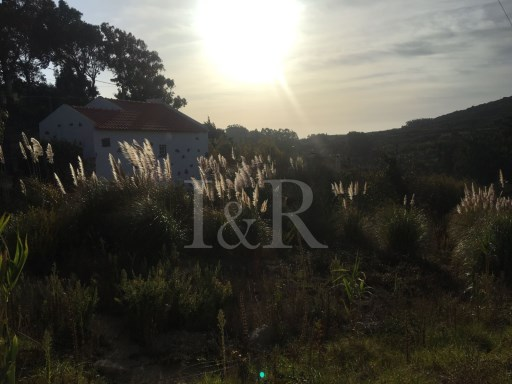 1 BEDROOM RUSTIC HOUSE IN MALVEIRA DA SERRA, CASCAIS | 1 Bedroom | 1WC