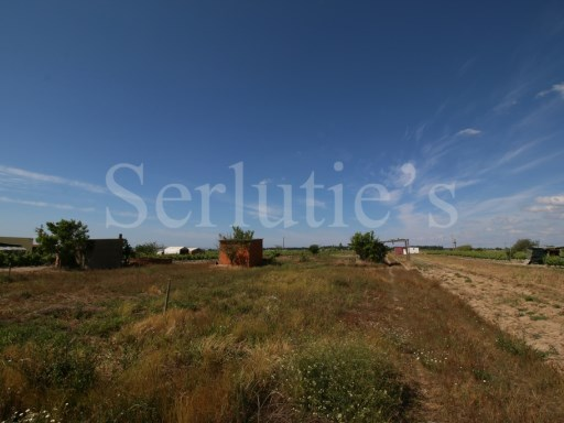 Agricultural land with 13.750 sqm in Almeirim |