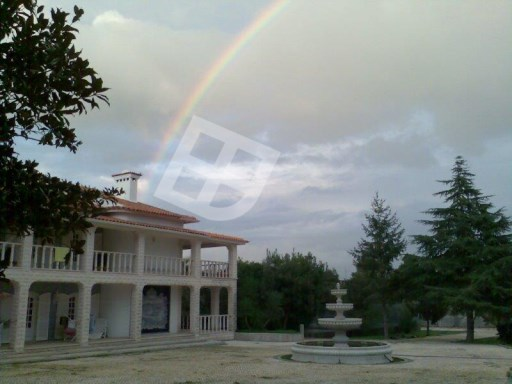 Farm › Aveiro | 6 Bedrooms
