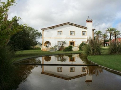 Country Estate › Abrantes |