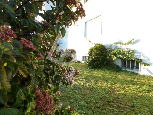 House › Oliveira do Bairro | 8 Bedrooms | 5WC