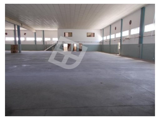 Warehouse › Águeda |