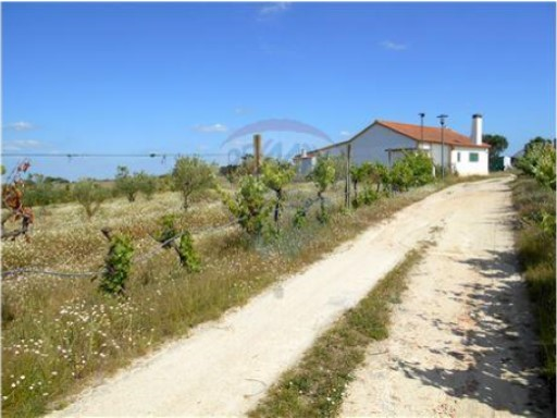 Farm › Montijo | 4 Bedrooms