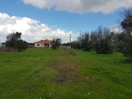 Farm land in Colos | 3 Bedrooms