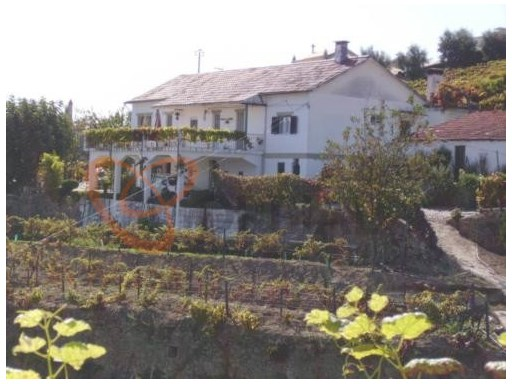 Buy farmhouse in Vila Marim.  | 4 Bedrooms
