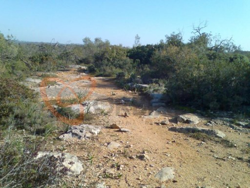 Rustic land for sale in Albufeira, Algarve.  |