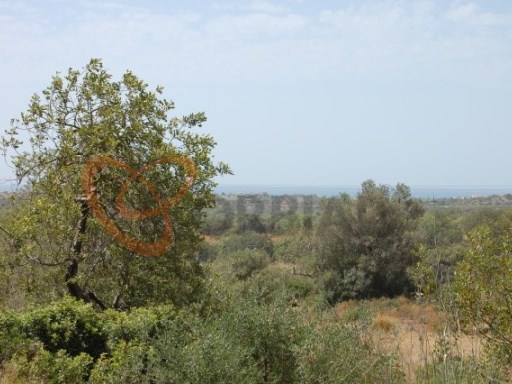 Rustic land for sale in Almancil, Algarve |