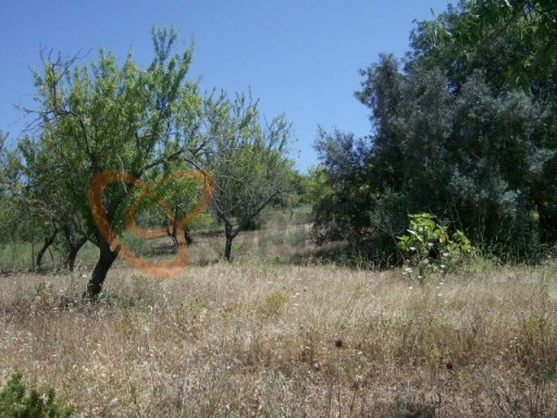 Rustic land for sale in Guia, Albufeira, Algarve  |