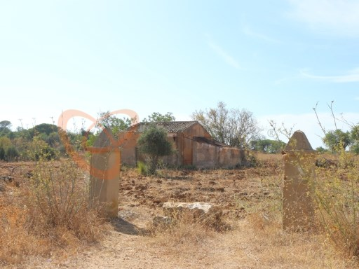 Land for sale with feasibility for construction. |