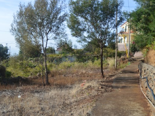 Plot of land for sale in Gaula, Santa Cruz. |